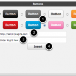 Button-Style-Options