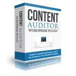 Content Auditor WordPress Plugin